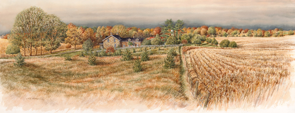 Autumn Morning - in Roseville- commissioned house portrait by Alex Krajewski