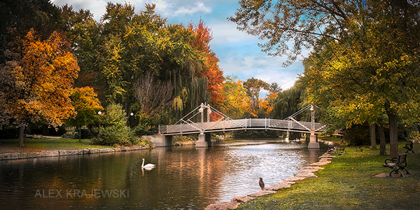 A fall picture by Alex Krajewski of a pedestrian bridge in Victoria Park in Kitchener