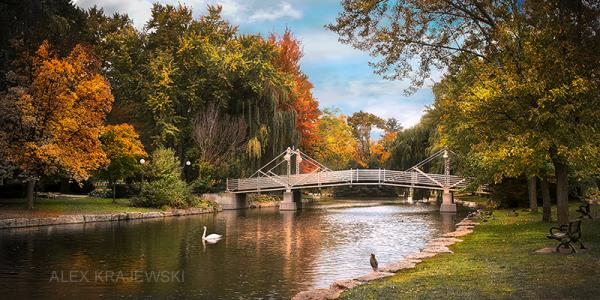 Victoria Park Bridge - Kitchener - Krajewski