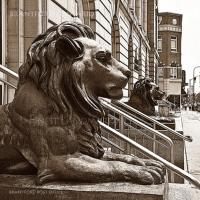 Post Office Lions