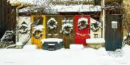 Elora Christmas Wreaths - narrow