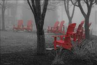 Elora Park with Red Chairs