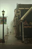 Foggy Walk in Elora